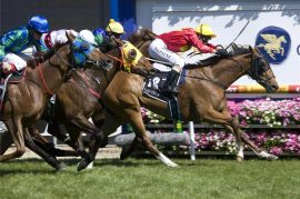 melbourne-autumn-racing-carnival